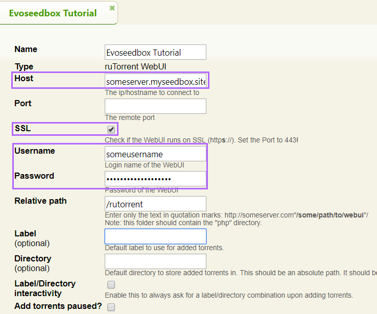 Your settings should look the same only with your seedbox details.