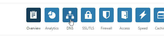 DNS Button on our CloudFlare domain dashboard