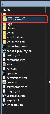 """Example world named """"custom_world"""""""