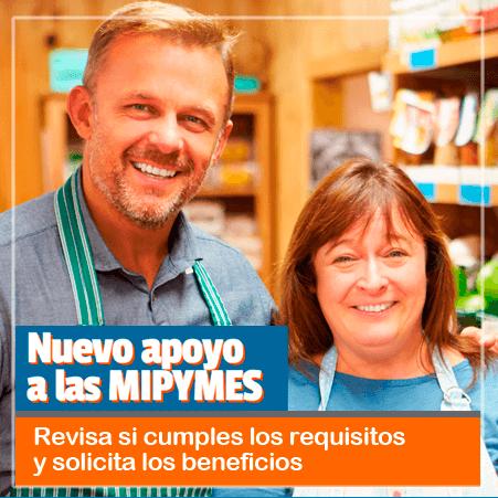 Banner del SII - nuevo apoyo a las MiPymes