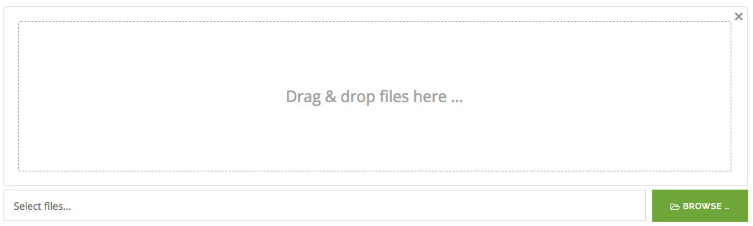 Drag and drop your files here