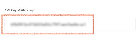 Pega la API Key de Mailchimp en Yeira