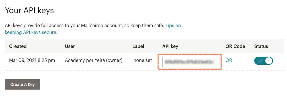 "Copia la ""API Key"" de tu cuenta Mailchimp"