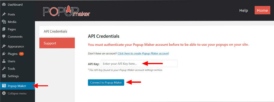 Popup Maker enter your API key to connect to the account
