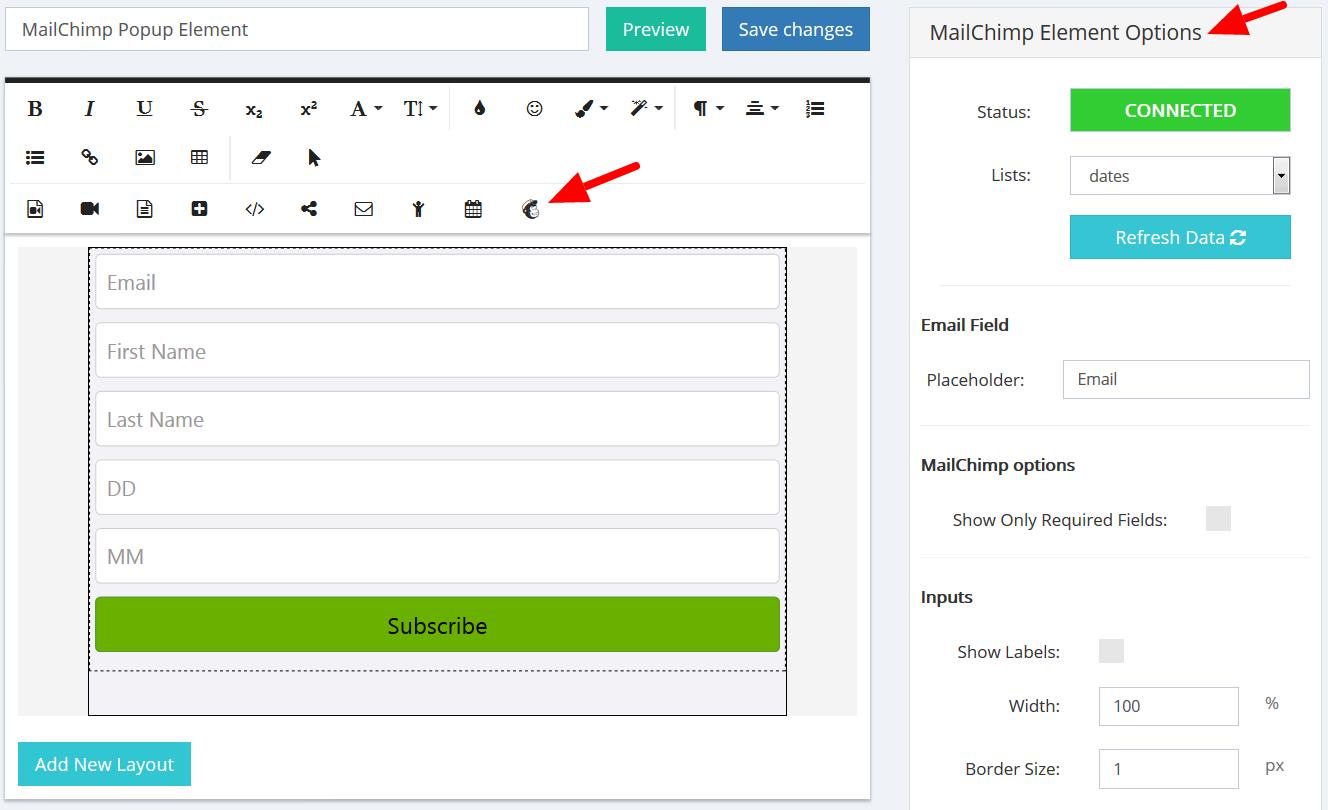 MailChimp Element Options