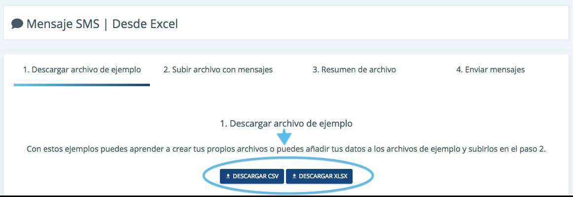 Descarga el formato solicitado para poder llenarlo con tu información.