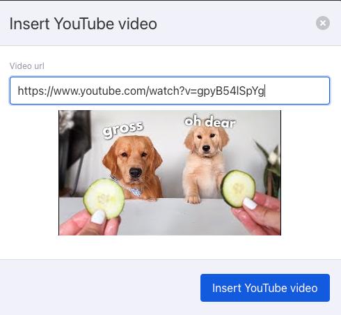 Insert youtube link