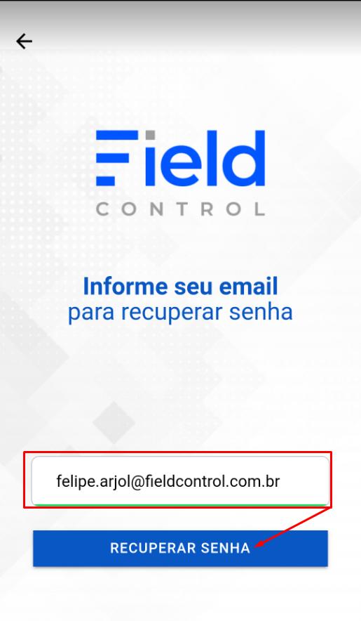 Preenchendo com o e-mail para redefinir