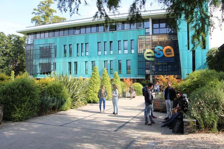 Ecole Supérieure d'Agricultures | Campus d'Angers