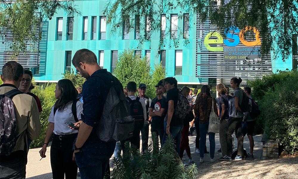 Ecole supérieure d'agriculture | Campus d'Angers