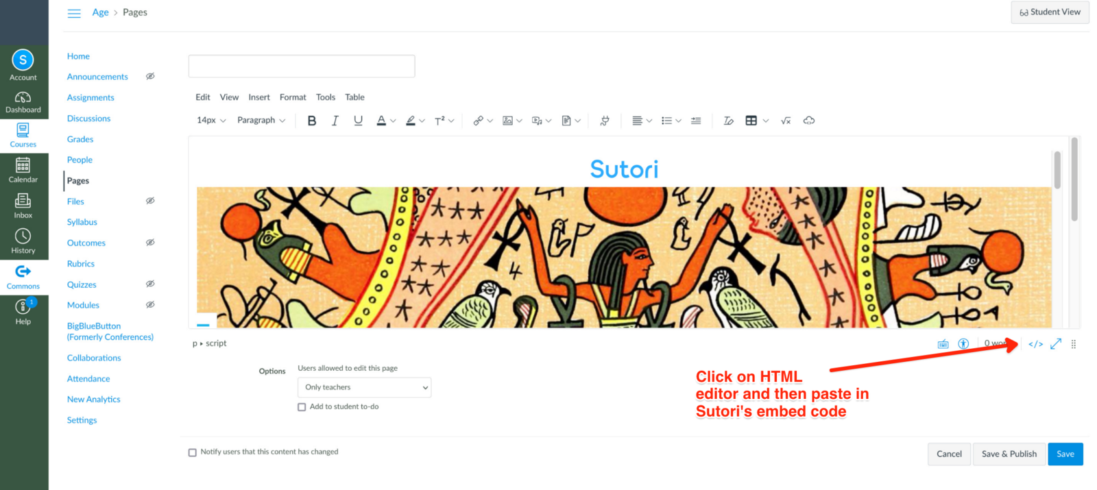 How to add the embed code on the HTML editor on Canvas