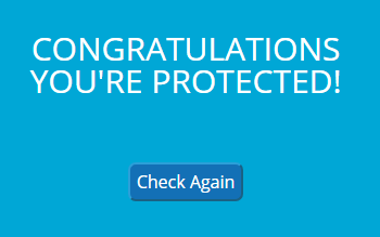 Successful protection check result